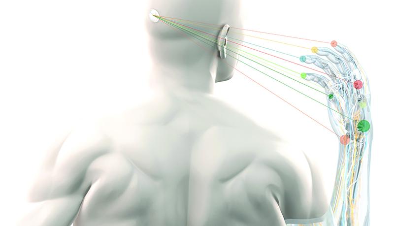 03-brain-interface-bcd_small